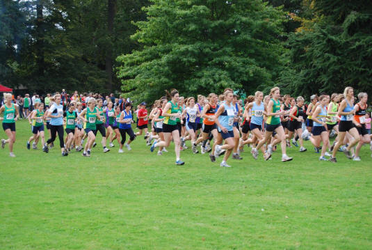 essays on running cross country Compare and contrast essays: cross country runners are always running through many different obstacles such as running up very steep hills and difficult.